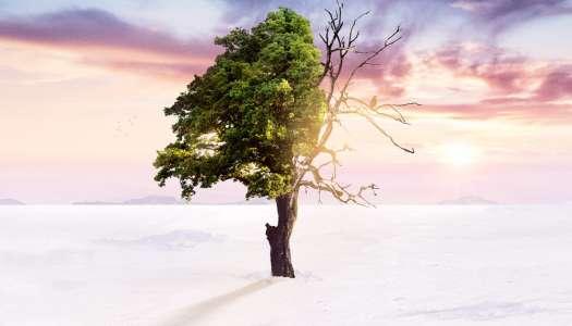 """Ouça """"Winter"""" – o novo espetacular álbum de Cold Blue."""